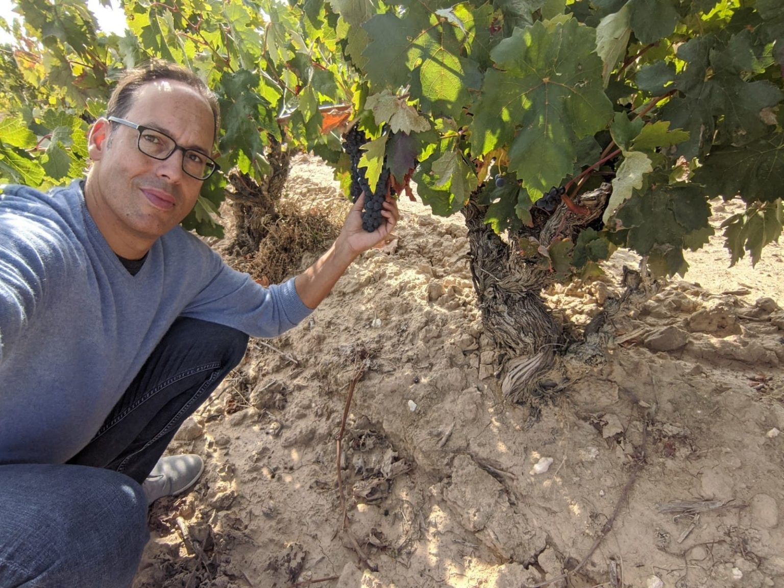 Although David came to the US to learn English and play sports, his passion has always been wine and so he set out to find out how the wine business worked in the US.