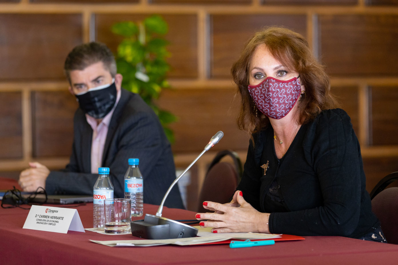 Carmen Herrarte at the Zaragoza City Hall during a working day with scientists and hoteliers on air quality. (Zaragoza City Council)